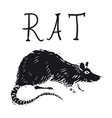 rat or mouse hand drawn on white background vector image vector image
