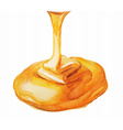 Watercolor Honey drip vector image vector image