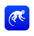 capuchin monkey icon digital blue vector image