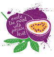 isolated purple passion fruit silhouette vector image