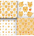 set of seamless yellow-white patterns with pigs vector image vector image