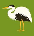 cartoon heron profile vector image vector image