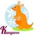 KangarooL vector image vector image