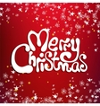 Merry christmas congratulation card vector image