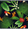 tropical jungle fowers leaves toucan seamless vector image vector image