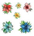 watercolor beautiful flowers with leaves vector image vector image