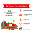 eat colors for your health-red foodeat a rainbow vector image vector image