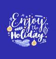 enjoy holiday inscription written vector image