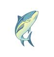fish tuna vector image vector image