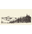 Hand drawn landscape fir forest and meadow sketch vector image vector image