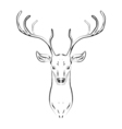 Male deer with horns head vector image