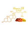 vitamin d3 with food label and icon chemical vector image vector image
