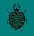 bug with tropical leaf insect withmonstera vector image vector image