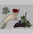 female hand holding a glass with red wine vector image vector image
