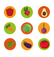 fresh vegetables organic and healthy food vector image