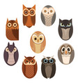 set stylized owls collection decorative vector image vector image