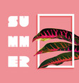 summer paradise design tropical jungle plant vector image vector image