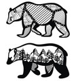 set of bears for your design vector image