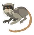 imperial tamarin icon cartoon style vector image