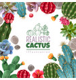 cactus succulents realistic frame vector image vector image
