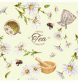 Chamomile tea seamless pattern vector image vector image