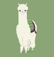 cute white fluffy alpaca on a green background vector image vector image