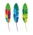 feathers multicolored carnival icon vector image