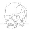 human skull one continuous line graphic ill vector image vector image