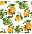 seamless pattern with citrus fruits and flowers in vector image