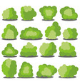 set of sixteen different cartoon green bushes vector image