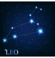 the leo zodiac sign of the beautiful bright stars vector image vector image