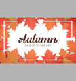 autumn sale banner with maple leaves frame and vector image vector image