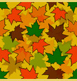 autumn seamless background maple leaves nature vector image vector image