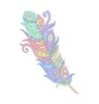 bohemian boho bird feather vector image