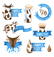 Dairy design elements vector image vector image