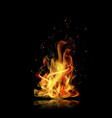 fire flame black background realistic fire vector image vector image