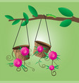 flower pot hanging on a tree vector image vector image