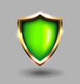 green and gold shield icon on grey background vector image vector image