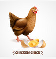 hatching chick realistic poster vector image