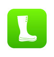 rubber boots icon digital green vector image vector image