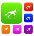shepherd dog set collection vector image vector image