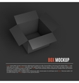 Open box mockup template vector image
