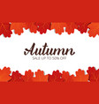 autumn sale banner with oak leaves frame and vector image