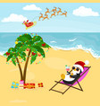 cartoon penguin resting in hammock with drink near vector image