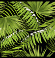 paradise summer pattern with tropical palm leaf vector image vector image