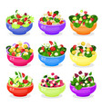 salad in bowl icon set isolated from vector image