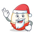 santa rambutan mascot cartoon style vector image vector image