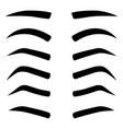 set various types eyebrows isolated vector image vector image