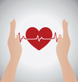 hands holding heart heartbeat vector image