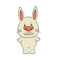 rabbit bunny animal cartoon vector image